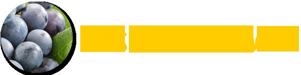 LogoTraubeWein